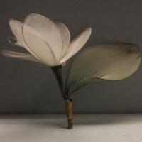 Second Flower.jpg